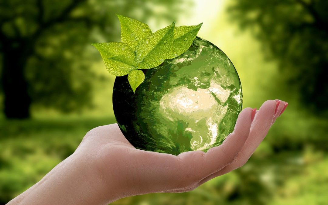 How Event Marketers Are Getting On-Trend and Going Green
